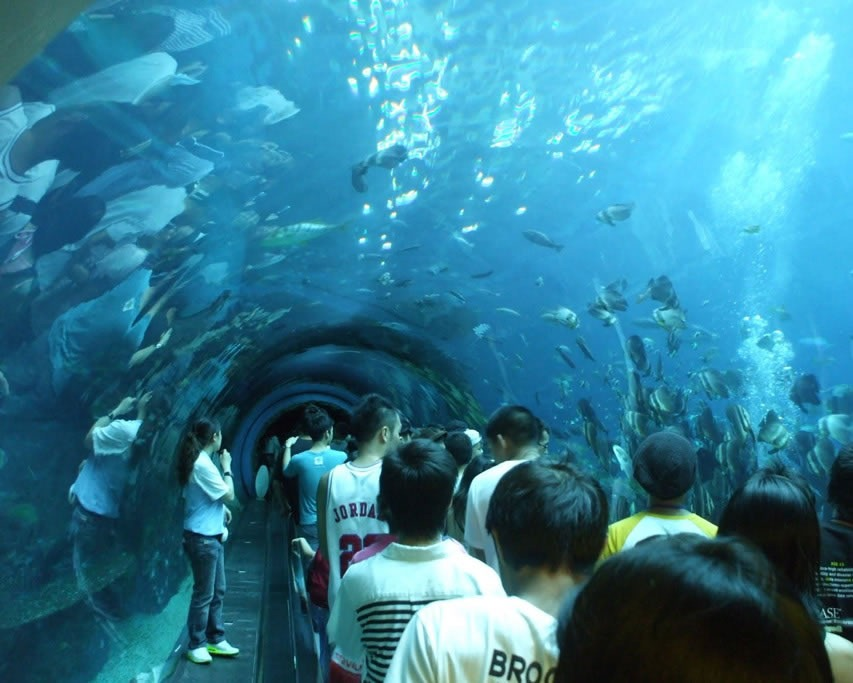 Turkey Tour: Antalya Aquarium Open - Luxury Turkey Tours ...